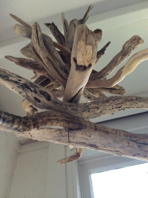 a driftwood project or two